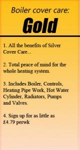 Gold Boiler Cover